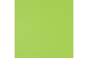 Зеленая 764