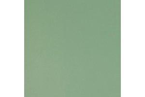 Зеленая-степная 763